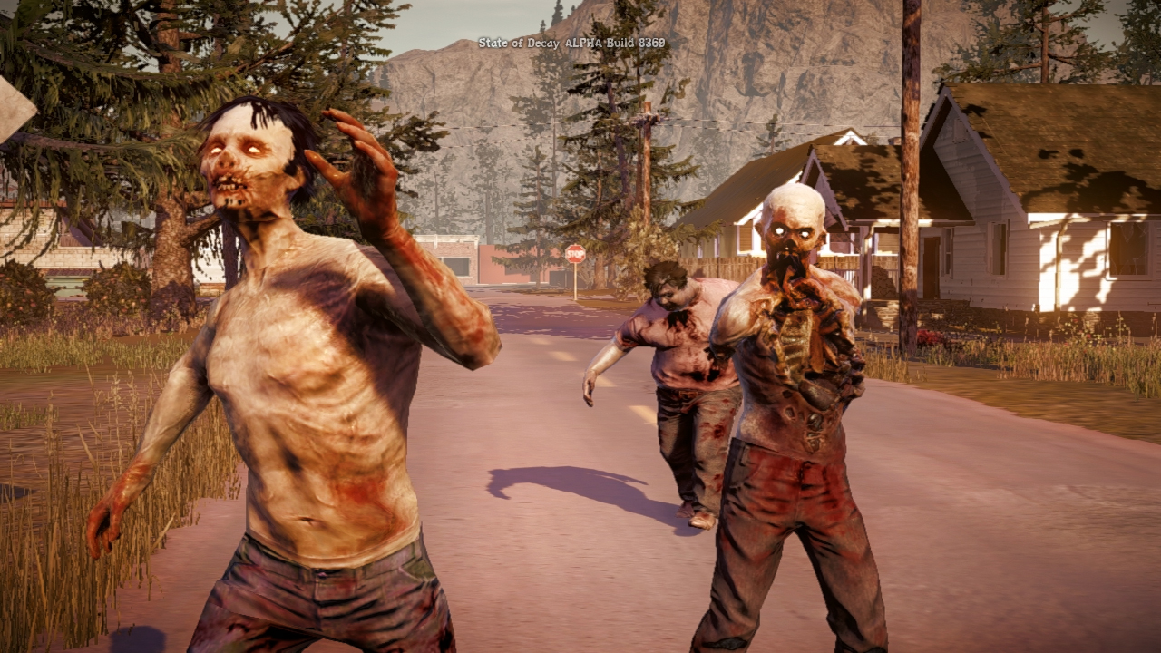 State Of Decay PC Game