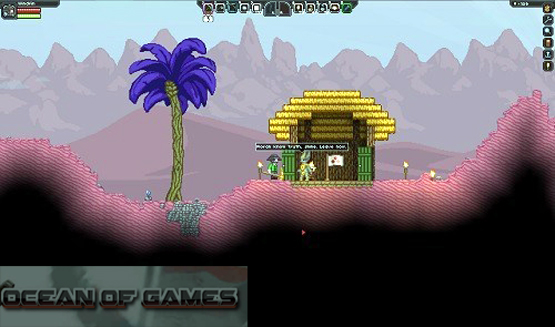 Starbound Features