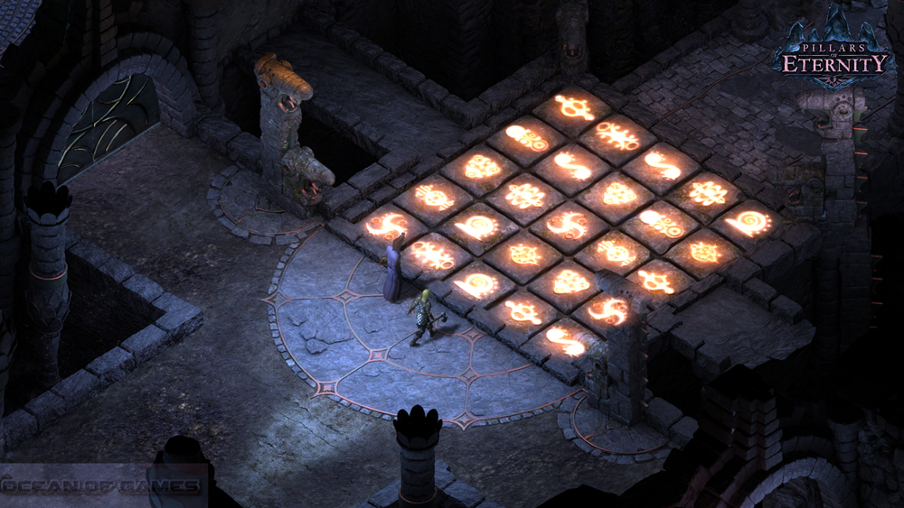 Pillars of Eternity Features