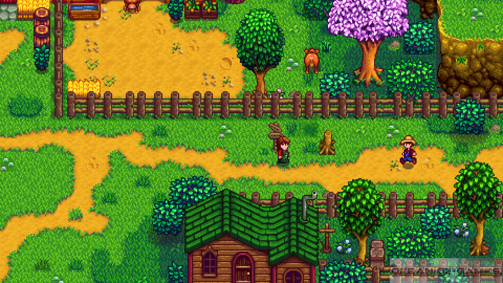 Stardew Valley Features