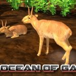 Wildlife Park 3 Asia Free Download